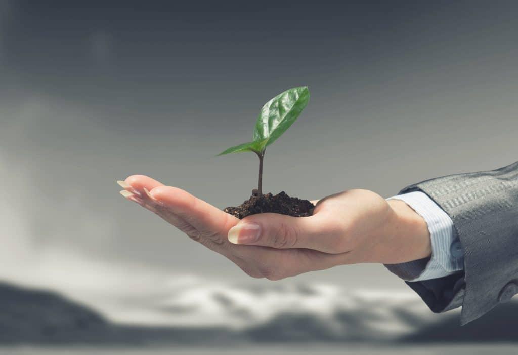 Die wirtschaftliche Beratung der Kanzlei Dierkes fördert nachhaltiges Wachstum Ihres Unternehmens.